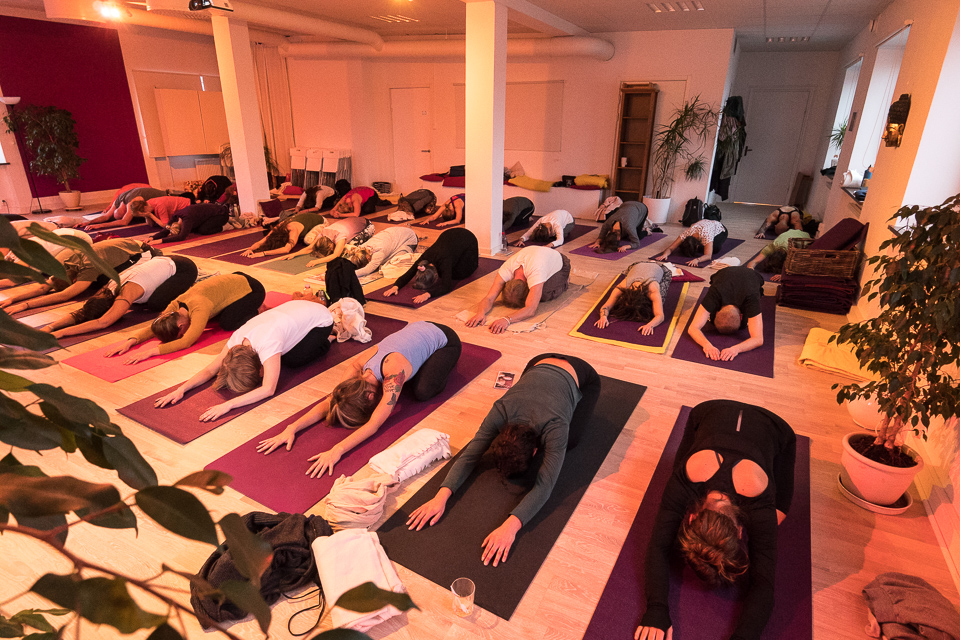Yoga Immersion Day